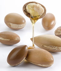 argan seeds and oil